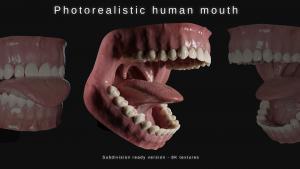 human mouth 3d model