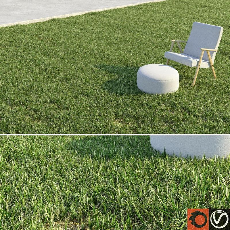 lawn grass 3d model turbosquid