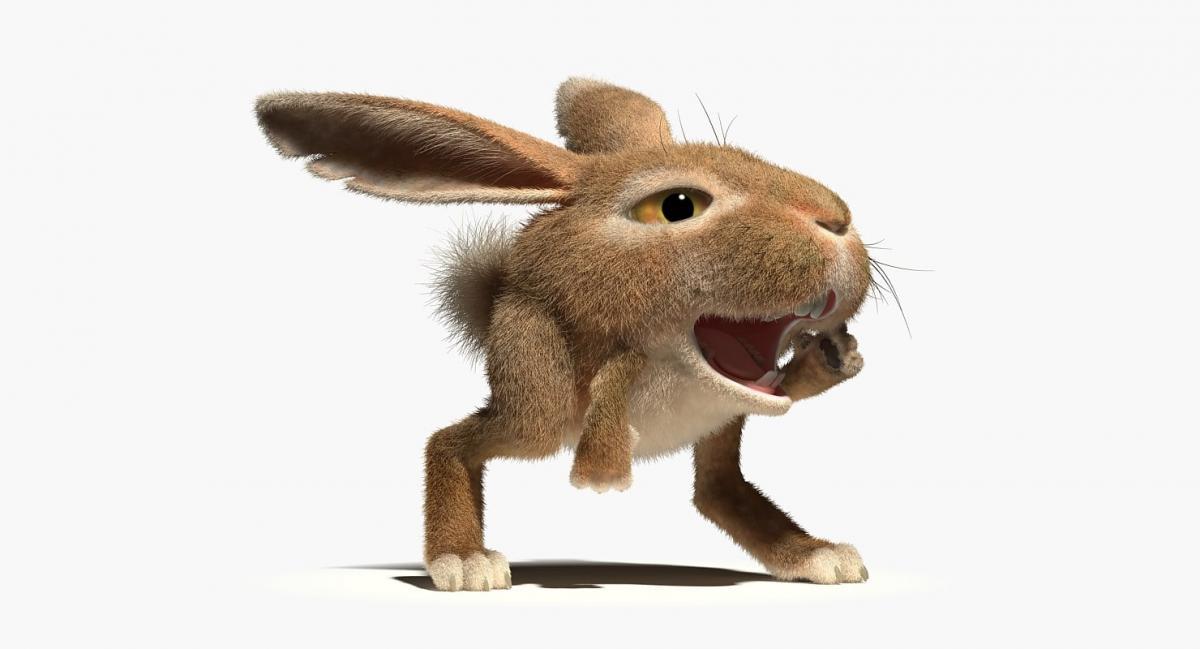 talking rabbit 3d model rigged turbosquid