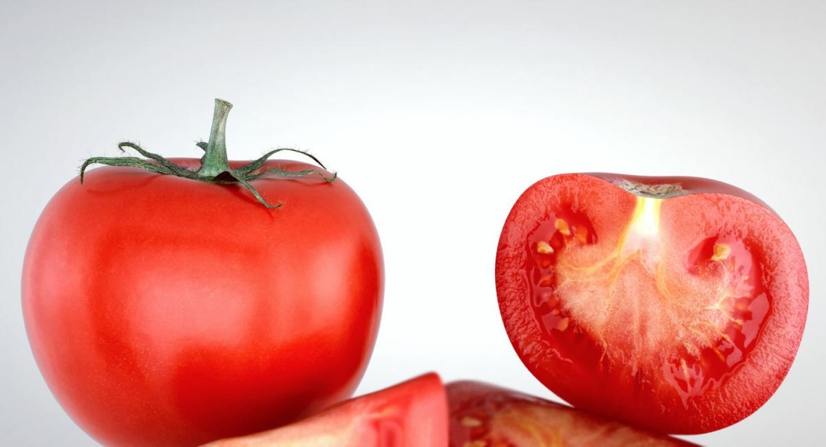 3d model of tomato