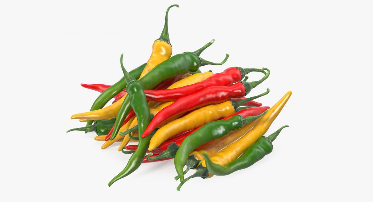 chili peppers 3d models turbosquid