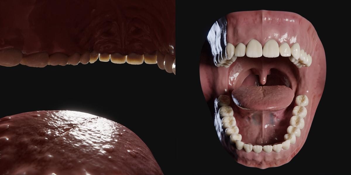 open human mouth 3d model
