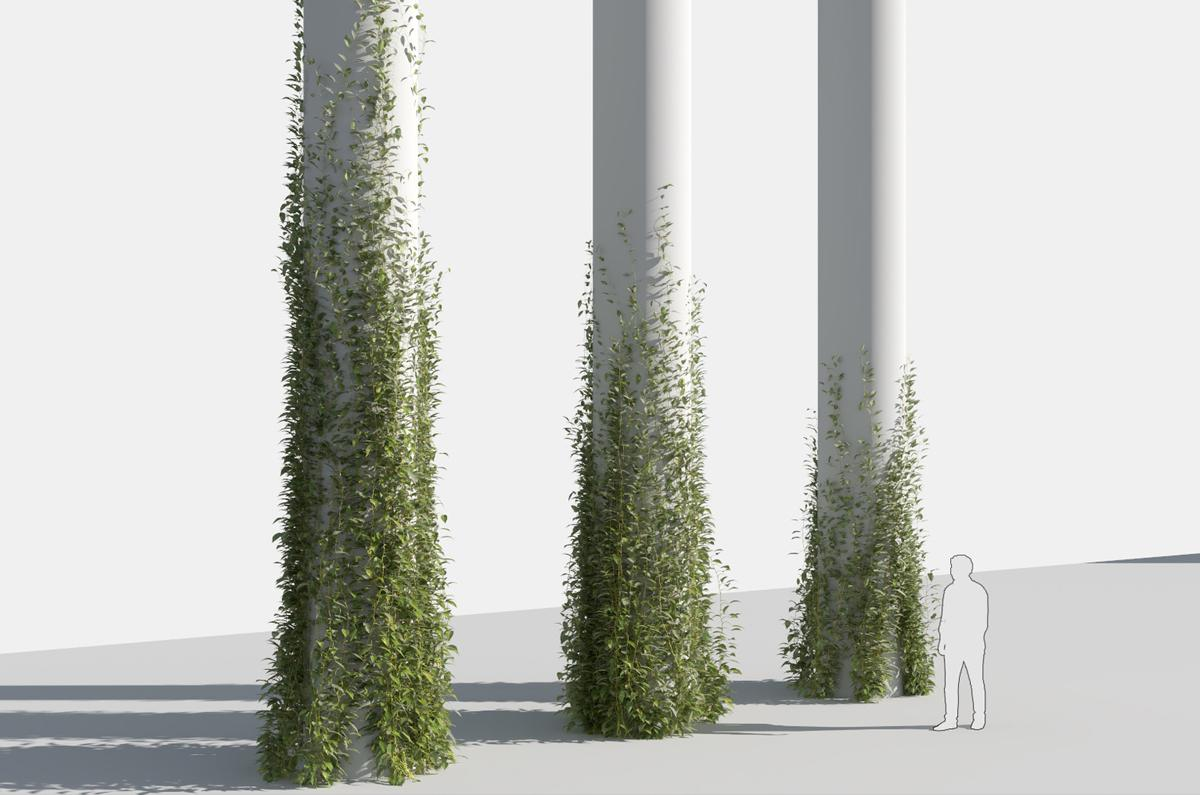 plant growing on tree 3d model turbosquid