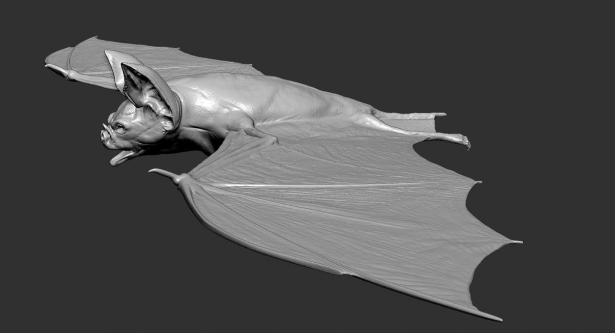 3d model vampire bat rigged