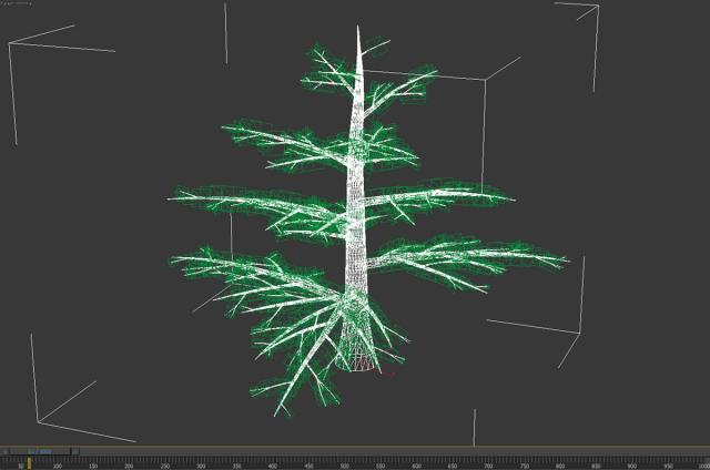 pine tree 3d model animated 3dexport