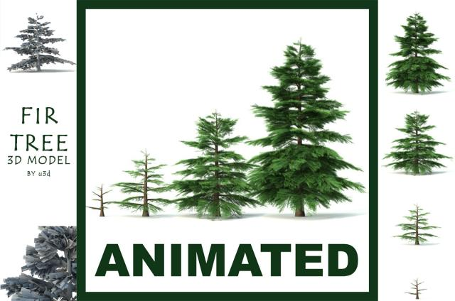 fir tree animated 3d model 3dexport