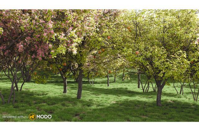 apple tree 3d model vizpark