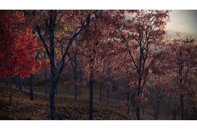 autumn forest 3d model vizpark