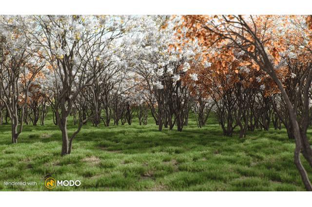canadian berry tree 3d model vizpark