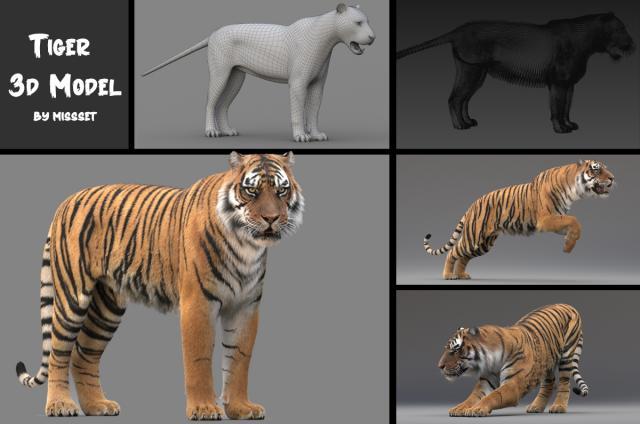 realistic tiger rigged 3d model turbosquid