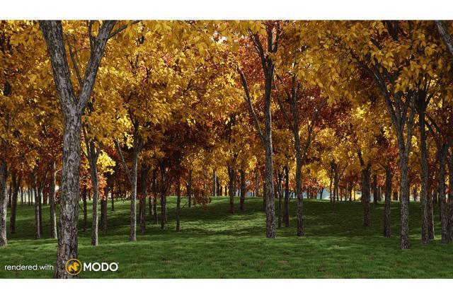 white oak tree 3d model vizpark