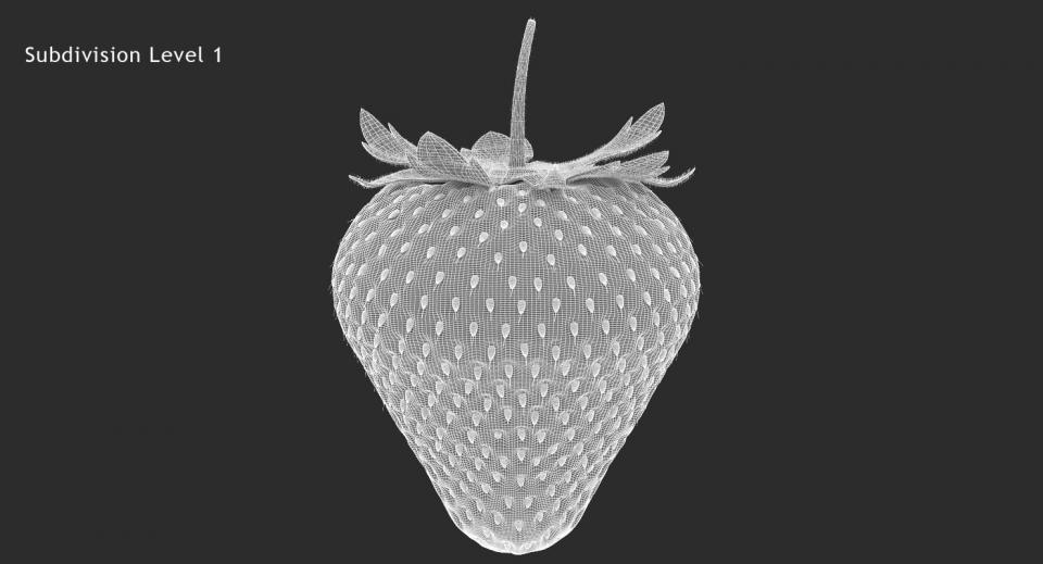accessory fruit 3d model turbosquid