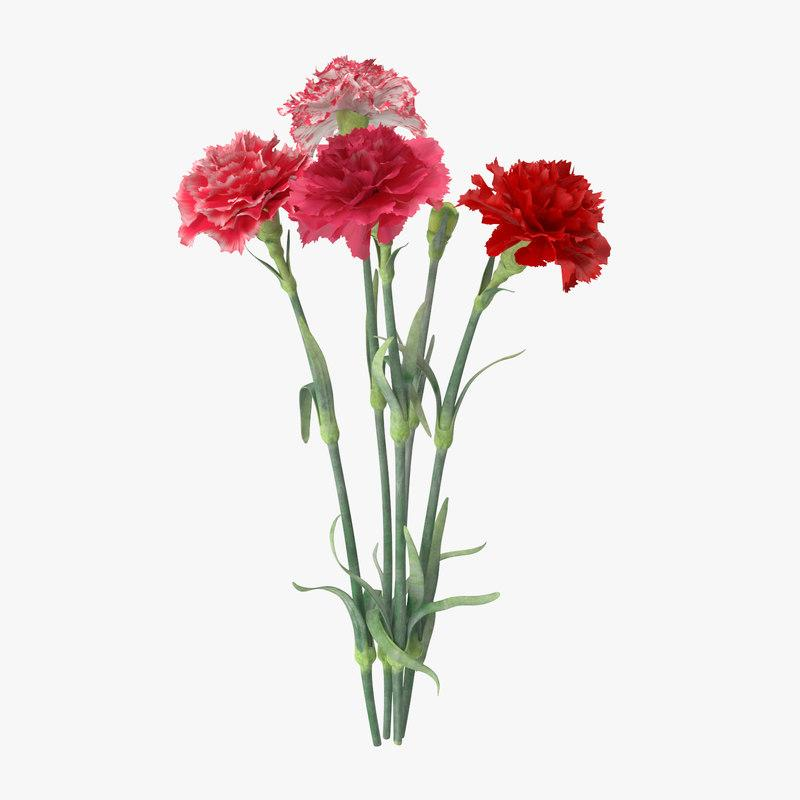 carnation bouquet 3d model turbosquid
