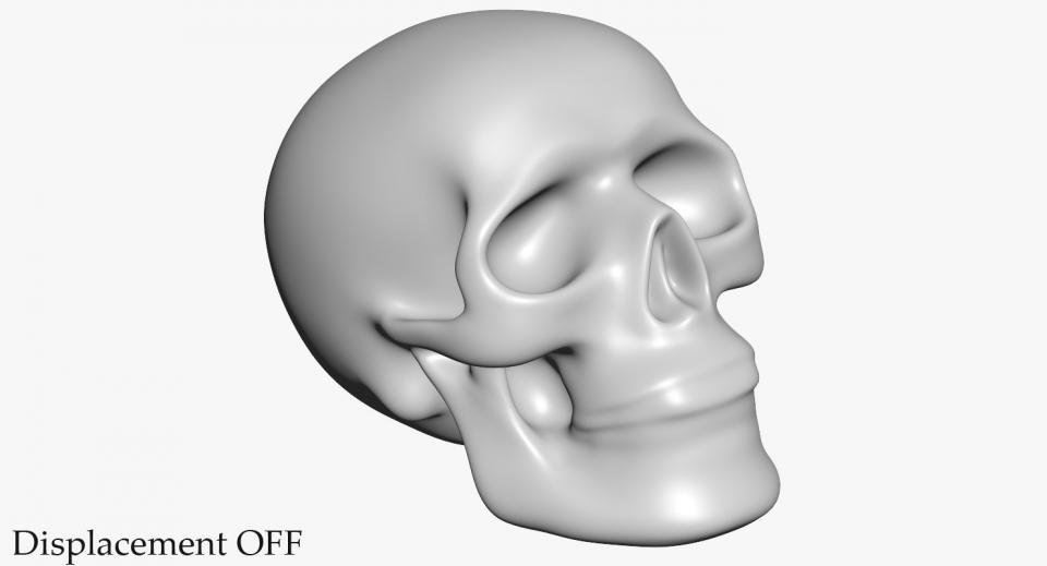3d model human skeleton skull
