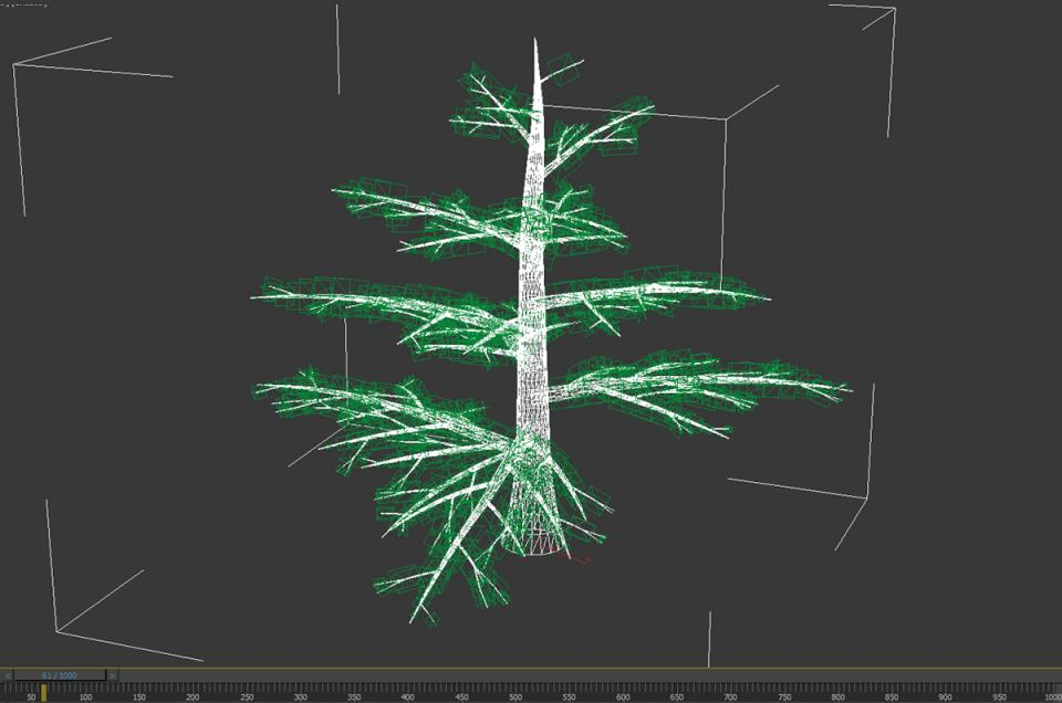 pine tree 3d model animated 3dexport