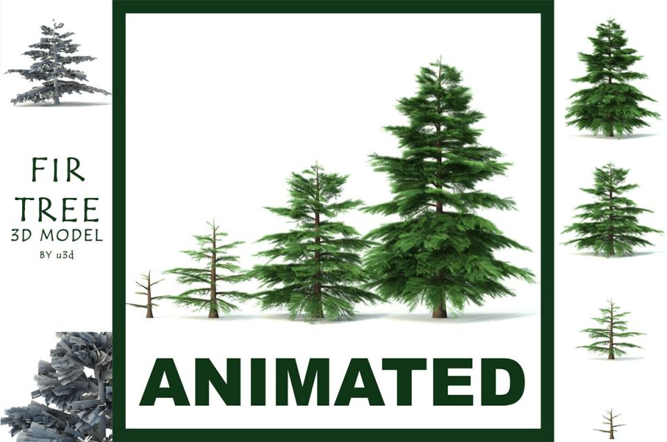 fir tree animated 3d model 3dexport