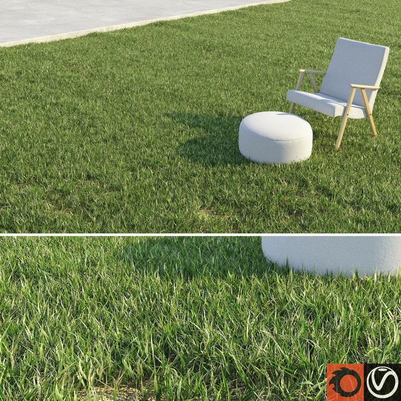lawn grass 3d model turbosquid