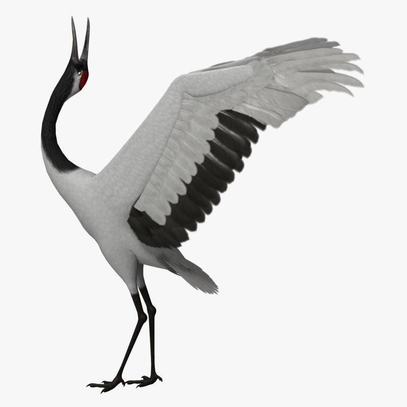 large east asian crane 3d model turbosquid