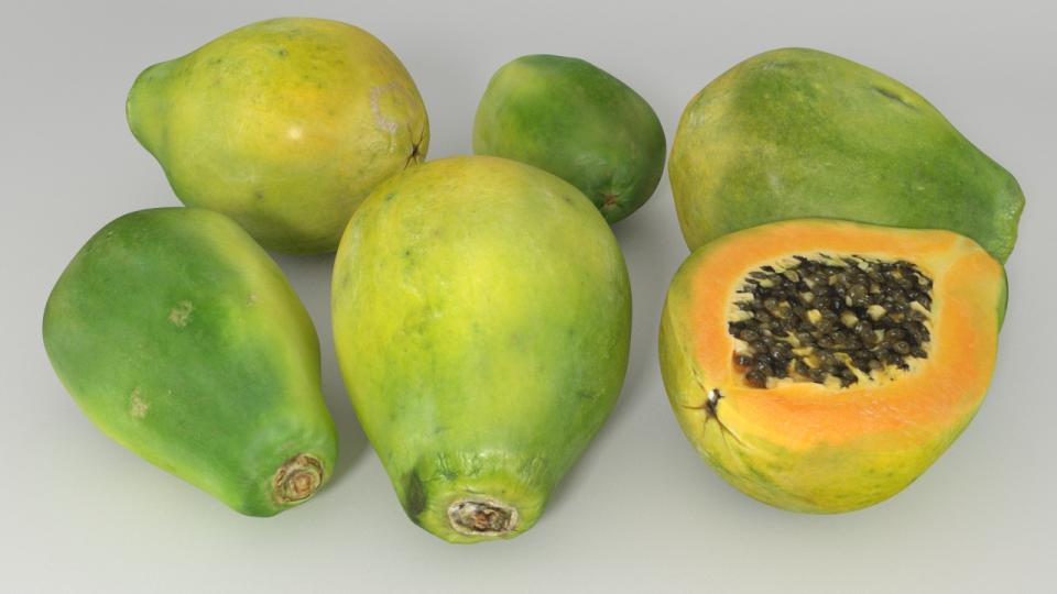 papaya 3d model vizpark