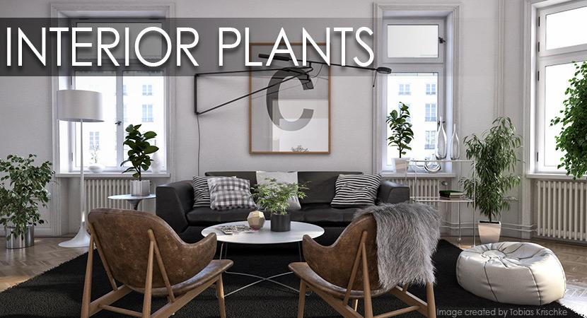 interior plants 3d model vizpark