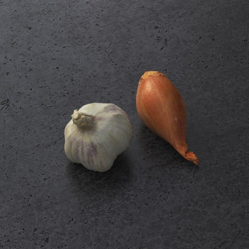 onion and garlic 3d model turbosquid