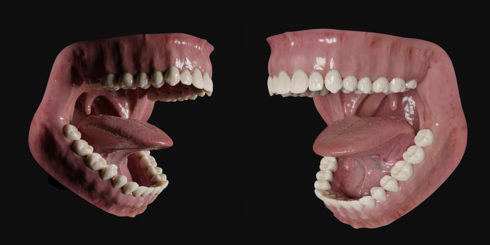 mouth 3d model