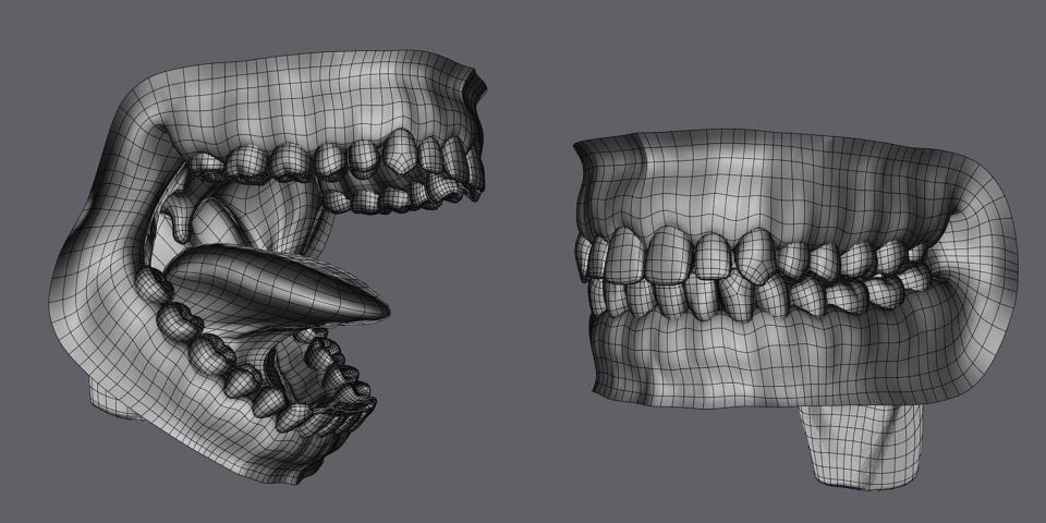 human anatomy 3d model