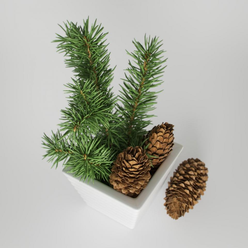 christmas decor 3d model