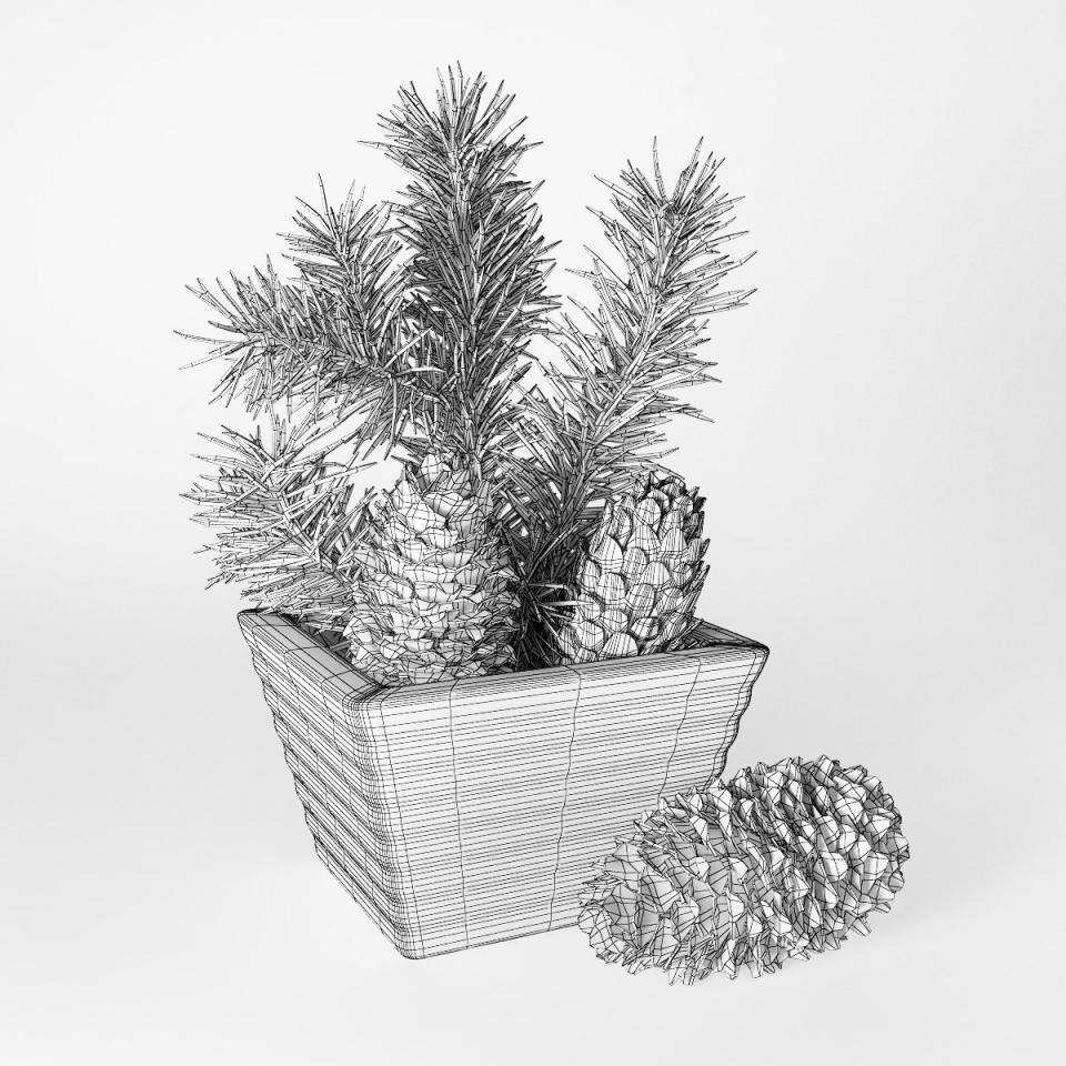 pinecones 3d model
