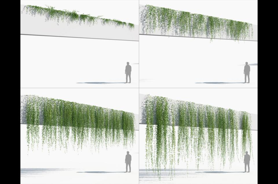 plant growing on wall 3d model turbosquid