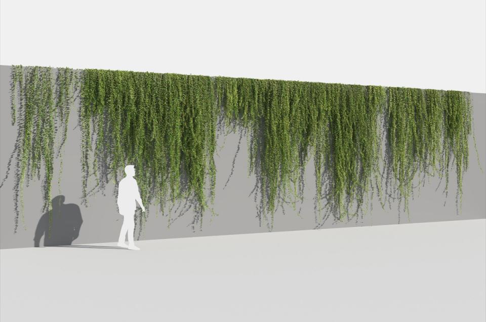 wall climbing plant 3d model turbosquid