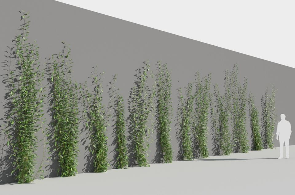 plants growing on walls 3d model turbosquid