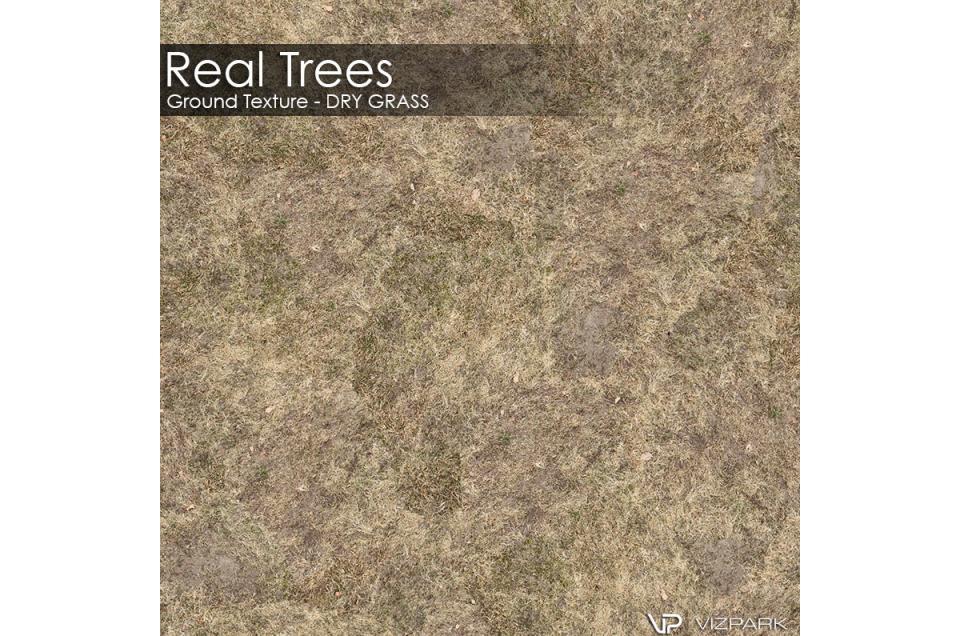 dry grass ground textures 3d model vizpark
