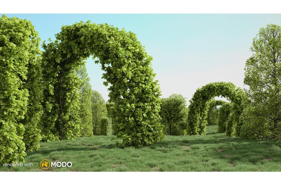 european hornbeam tree 3d model vizpark