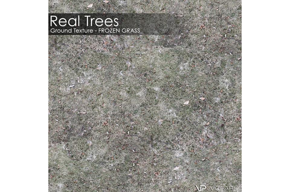 frozen grass ground textures 3d model vizpark
