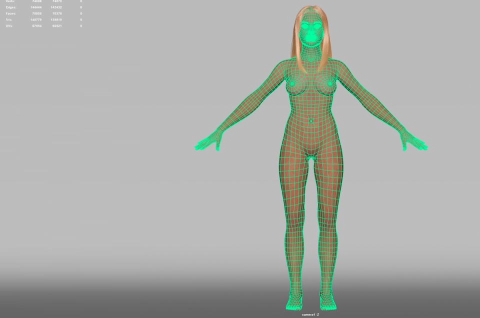3d female anatomy model turbosquid