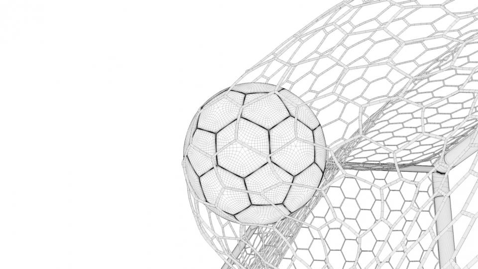 ball on net animated 3d model turbosquid
