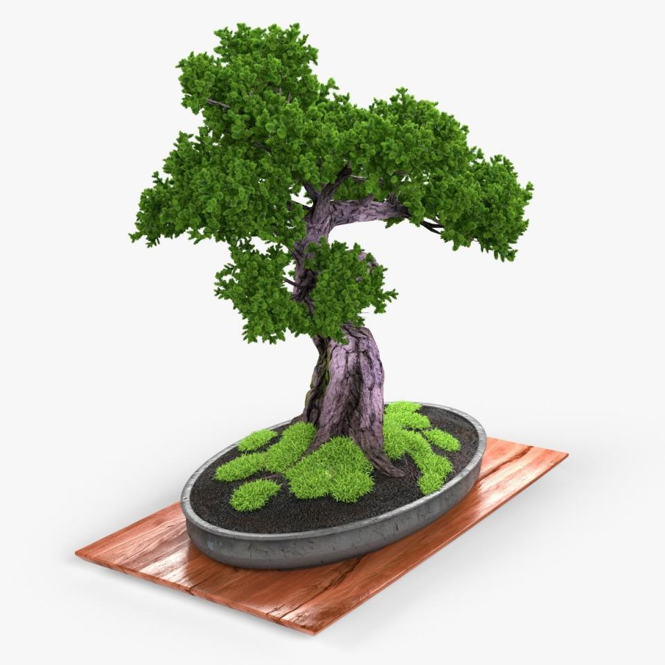 small tree 3d model turbosquid