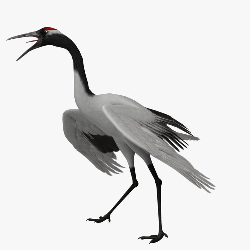 rare crane 3d model turbosquid
