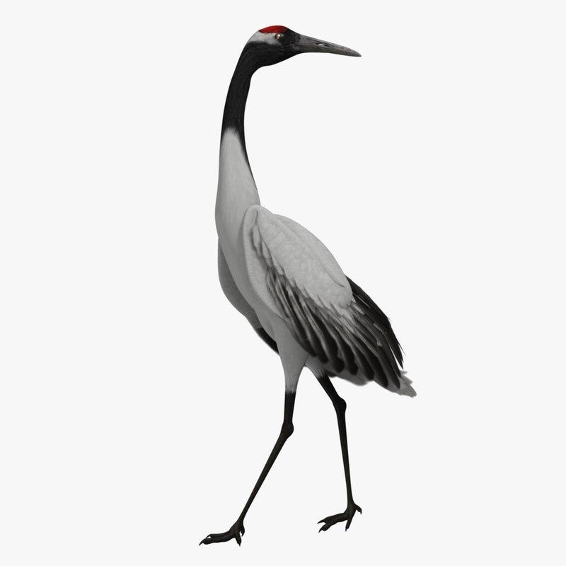 crane standing 3d model turbosquid