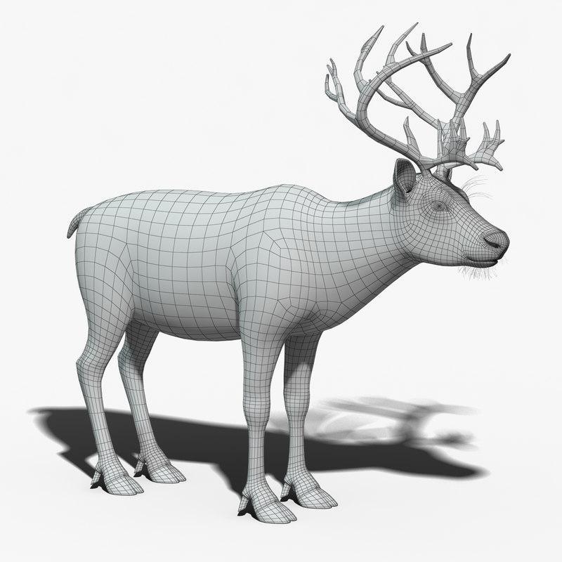 wildlife christmas animal reindeer 3d model turbosquid