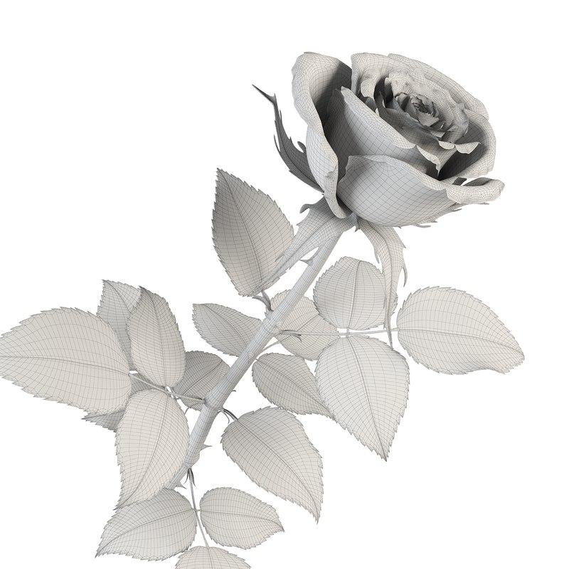 valentine rose 3d model turbosquid