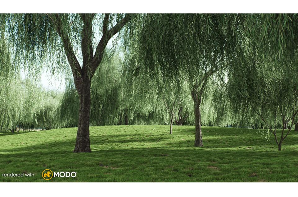 weeping willow tree 3d model vizpark