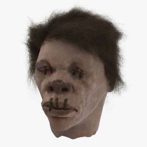 3d model zombie head