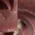 human tongue 3d model
